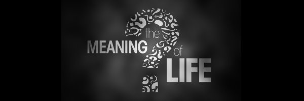 meaning of life-banner