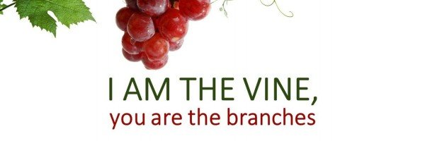 I Am The Vine You Are Branches