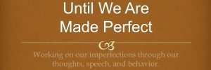 until-we-are-made-perfect.jpg
