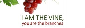 I-am-the-vine-you-are-the-branches-large-600x200.jpg